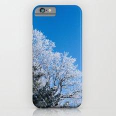 Frost Slim Case iPhone 6s