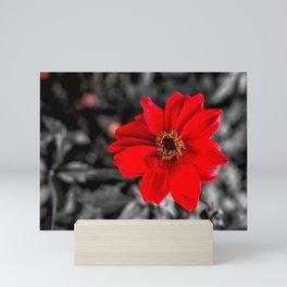Red and Yellow Mini Art Print