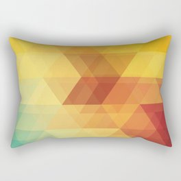 The Geometry Of Triangles Part-1 Rectangular Pillow
