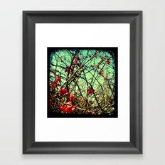 Blossom Frenzy - Through The Viewfinder (TTV) Framed Art Print