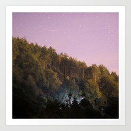 Daynight woodland activities Art Print