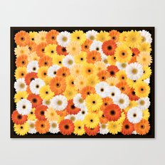 Covered in Gerberas Canvas Print