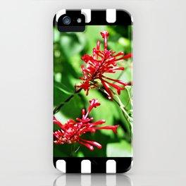 Jungle blossom iPhone Case