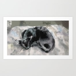 hong kong cats #2 Art Print