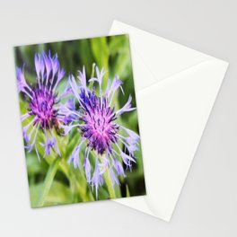 summer of 2011 Stationery Cards