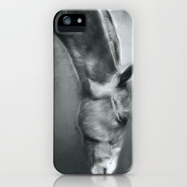 Horse Profile iPhone Case