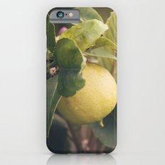 Limón iPhone 6s Slim Case