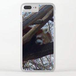 Sleeping red Panda Clear iPhone Case