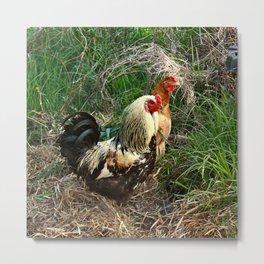 Rooster & Hen Metal Print