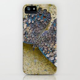 Turquoise and Sand Butterfly by Teresa Thompson iPhone Case