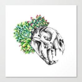 Rock Rose Cat Skull Canvas Print