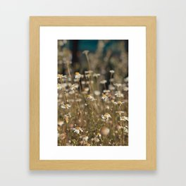 Field of Daisies - Floral Photography #Society6 Framed Art Print