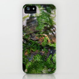 Just the Moss iPhone Case