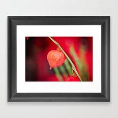 Little red flower Framed Art Print