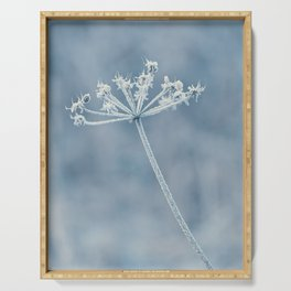 Blue Winter Flower In Blue Light Serving Tray