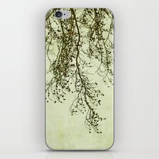 awaiting spring iPhone & iPod Skin