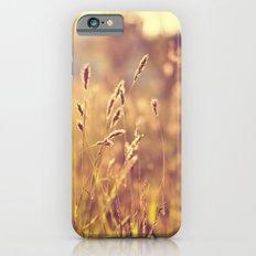 Warm Summer Eve iPhone 6s Slim Case