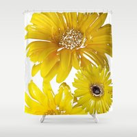 daisies Shower Curtains featuring Daisies by Regan's World