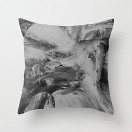 #5 Throw Pillow