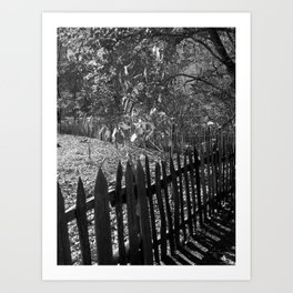 The Fenceline Art Print