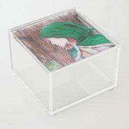The Hooded Rogue Acrylic Box