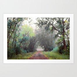 Rasmussen Woods Art Print