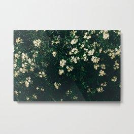 Plants background Metal Print