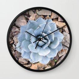 Pastel Blue Succulent Wall Clock