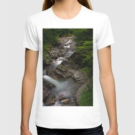 Pacific Northwest Beauty T-shirt