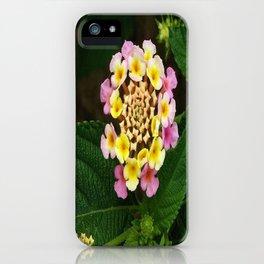 Fresh Lantana Flower Against Leaf Background iPhone Case