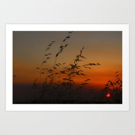 Sunset in the Wind Art Print