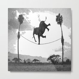 The elephant on the tightrope Metal Print