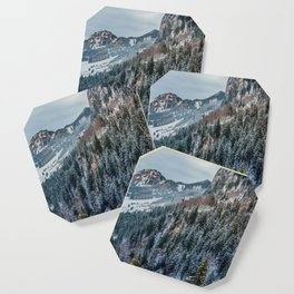 Forest - Bavarian alps Coaster