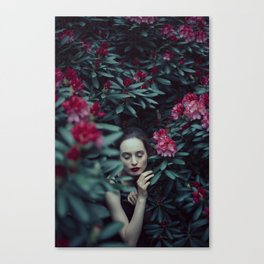 Within nature Canvas Print