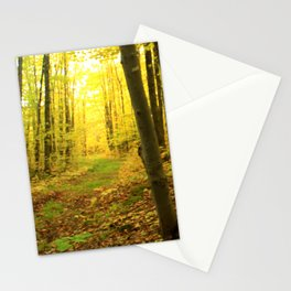 Autumnal Pathway Stationery Cards