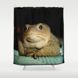 A Common Toad With Philosophical Disposition Shower Curtain