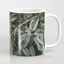 Blueberry frost Coffee Mug