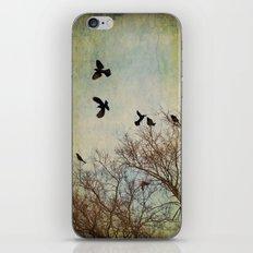 Away iPhone & iPod Skin