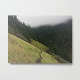 Starvation Creek Meadows Metal Print