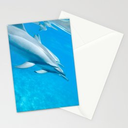 Dolphin Smiles Stationery Cards