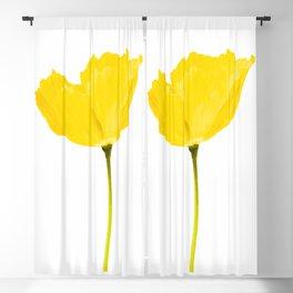 Yellow Poppy White Background #decor #society6 #buyart Blackout Curtain