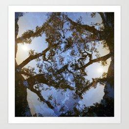 Sungazing Silhouette Art Print