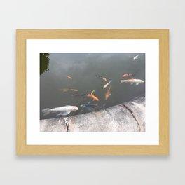 kio pond Framed Art Print