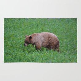 Cinnamon bear in Jasper National Park | Canada Rug
