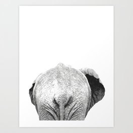 Black and white elephant animal jungle Art Print