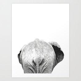 Black and white elephant animal jungle Art Print