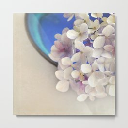 Pale pink Hydrangea flowers in blue bowl. Metal Print