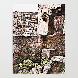 Sassi di Matera: stones and flowers Poster