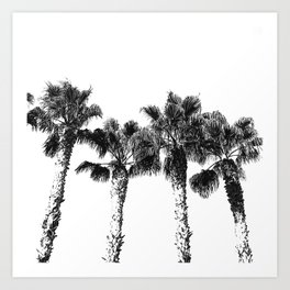 Tropical Palm Tree Photography {2 of 2}   Black and White Art Print