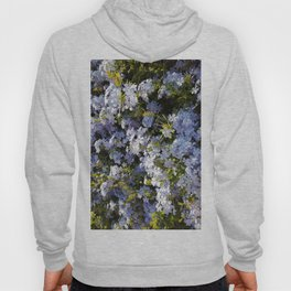 a violet flower in the heart of Athens Hoody